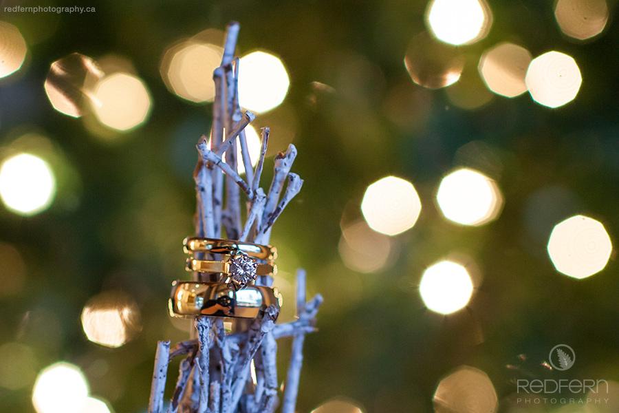 Kelowna wedding photo wedding rings