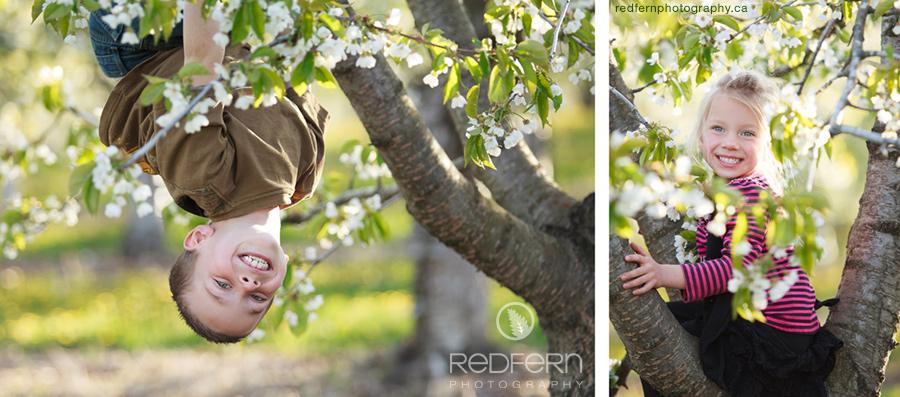 kelowna_orchard_kids_photo