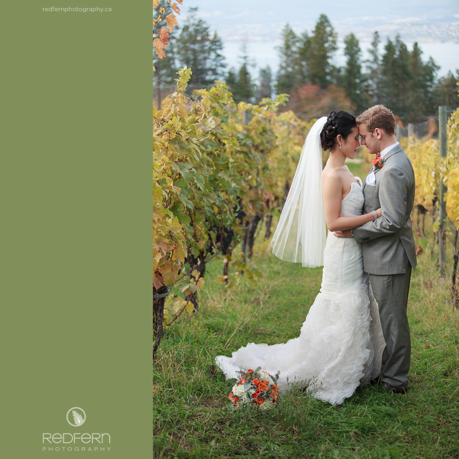 6_kelowna_summerhill_pyramid_winery_wedding_photos_vineyard_autumn