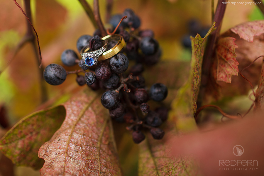 8_kelowna_wedding_vineyard_autumn_grapes_leaves