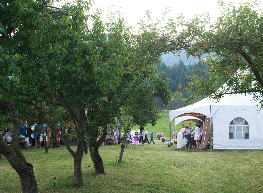 rainy farm wedding fruit trees orchard salmon arm