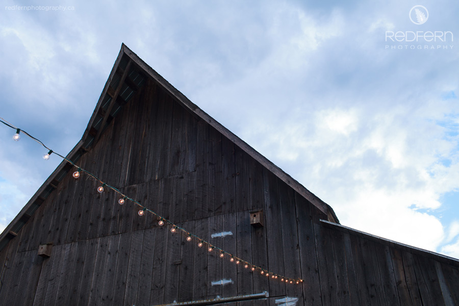 old barn twinkle lights wedding