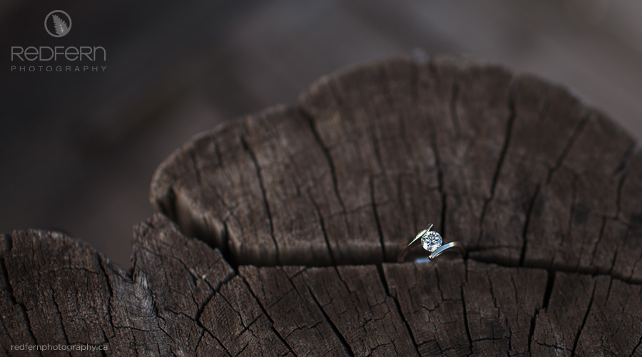 engagement ring picture weathered wood