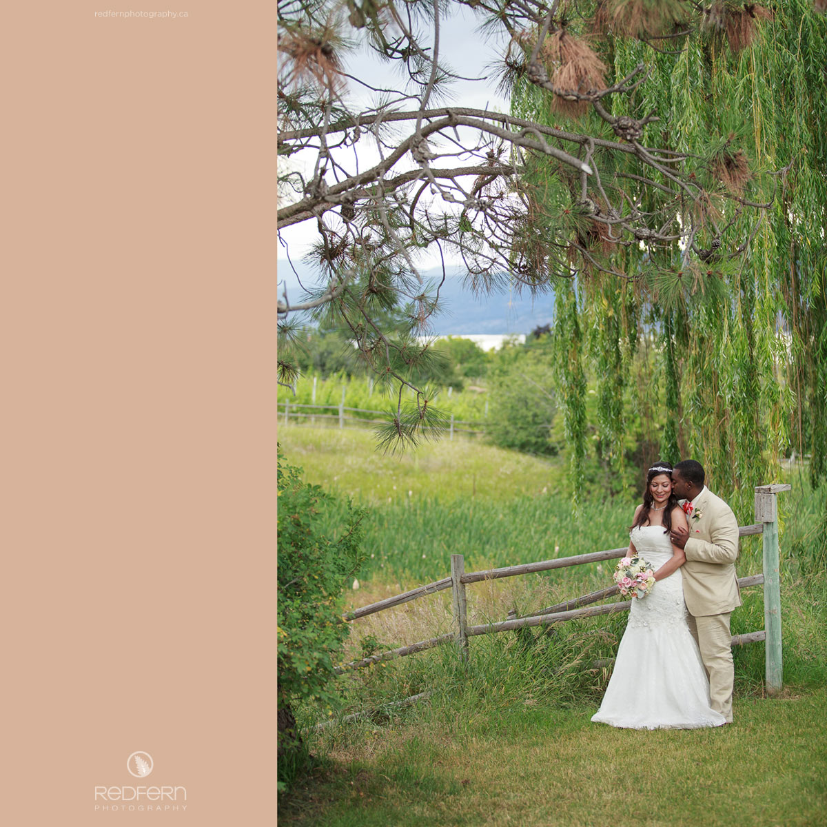 summerhill_winery_wedding_willow_tree